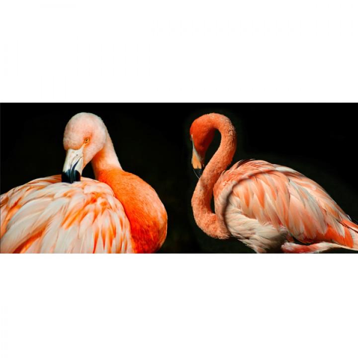 Картина АGL2-044 в раме 50*120*4,5 глянцевая Фламинго