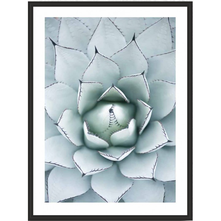 Картина PGL-44 в раме ПВХ 30*40*4,5 глянцевая Каменная роза